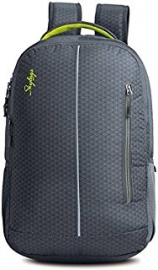 Skybags Lazer 03 Grey Laptop Backpack