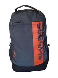 Skybags Boost 02 Grey Laptop Backpack