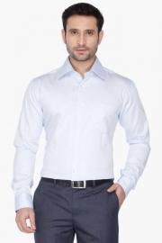 Park Avenue Mens Regular Collar Solid Shirt