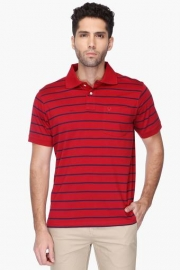 Allen Solly Mens Stripe Polo T-shirt