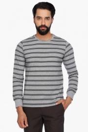 Allen Solly Mens Full Sleeves Round Neck Stripe T-shirt