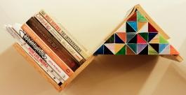 Barish Book Unit With Reading Light