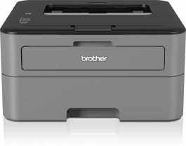 Brother Hl-l2321d Single Function Printer  (black, Toner Cartridge)