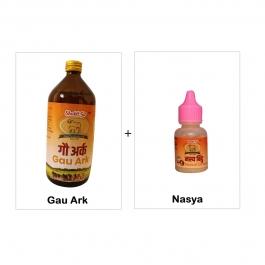 Gau Ark + Nasya