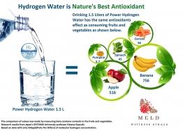 Meld Power Hydrogen Water - 1 Stick (boost Your Immunity)