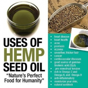 Pure Hemp Seed Oil Cold Pressed 100ml