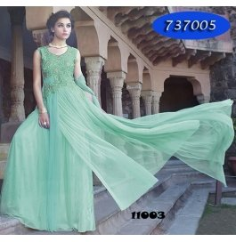 Light Green Embroidery Net  Floor Length Gown