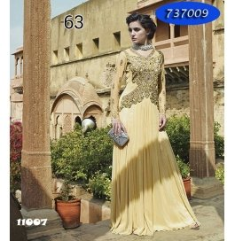 Chiku Embroidery Georgette  Floor Length Gown