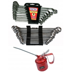 Ketsy 821 Hand Tool Kit 21 Pcs.(ring Spanner 8 Pcs.,combination Spanner 12 Pcs.,oil Can 1 Pcs.1/4)