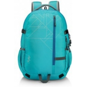 Skybags Teckie 01.5 With Rain Cover 35 L Laptop Backpack (blue)