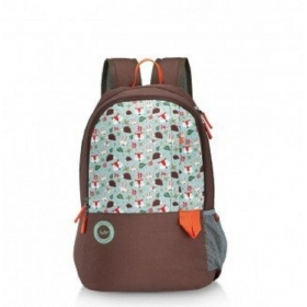 Skybags Mario 02.02 30 L Backpack (brown)