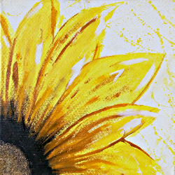Sunflower Handmade 17x17inch Acrylic And Oil On Canvas Painting With Stretcher Frame -thejarvisgallery