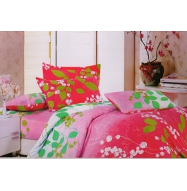Sani Home Decor Double Bedsheets With 2 Pillow Covers Multi Color Floral Design