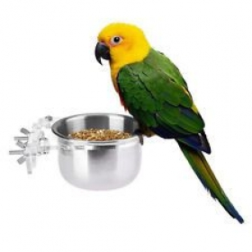 Bird Feeding Bowl With Clamp 200ml