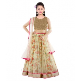 Multicolor Net Comfortable Lehenga Choli Set