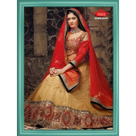 Sas Creations Best Net Cream Lehenga