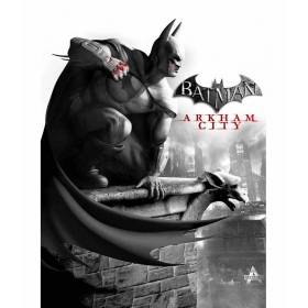 Batman Arkham City -b 12x19 Inch Poster