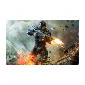 Crysis 2 -a 12x19 Inch Poster