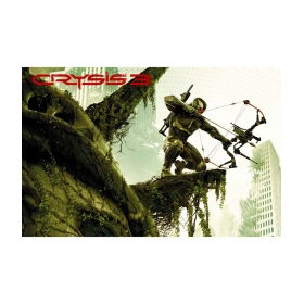 Crysis 3 C 12x19 Inch Poster