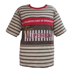 Global Heart Half Sleeves Tshirt Superior Printed - Light Brown