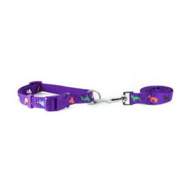 Purple Leash & Collar- 0.75 Inch