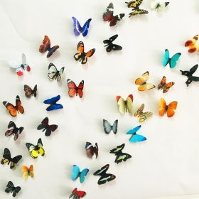 H1-003 Multicolour  Butterfly  Wall Sticker  Jaamso Royals