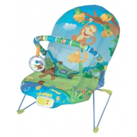 Vibrating & Soothing Baby Bouncer (light Green)