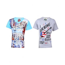 Multicolour Printed T- Shirt For Boys (pack Of 2)