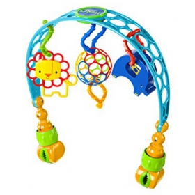 O Ball Flex ''n Go Activity Arch Take-along Toy