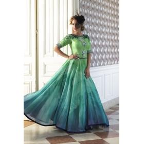 Odin Paris Special Designer Exclusive New Designer Green Digital Print Gown