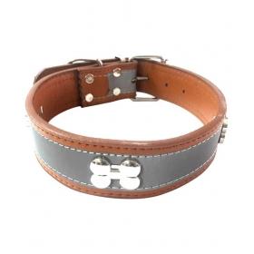 Pet Centre Collar