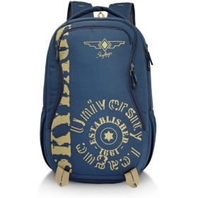 Skybags Raider 02 Blue 30 L Backpack (blue)