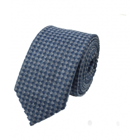 Regali Collections Blue Checks Woven Necktie