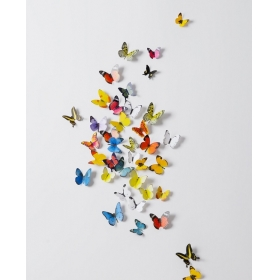 H1-005 Multicolour  Butterfly  Wall Sticker  Jaamso Royals