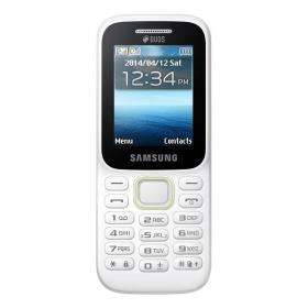 Samsung B310e Guru Music 2 (white)