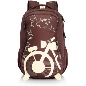 Skybags Raider 03 Dark Brown 26 L Backpack (dark Brown)