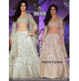 Sas Creations Ideal Fab Net White Lehenga
