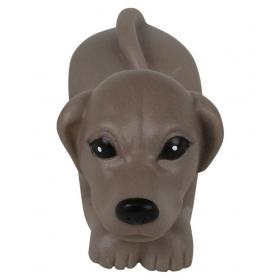 Pet Squezee Toy