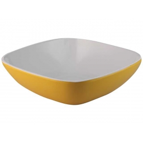 Square Bowl Double Colour 6