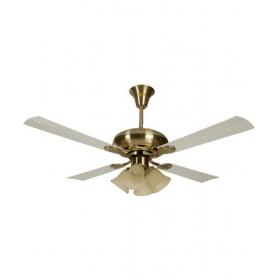 Usha Fontana Orchid Ceiling Fan