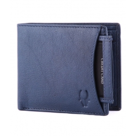 Wildhorn Leather Blue Men Regular Wallet